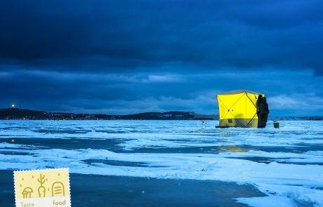 המבוכה הגדולה בקמפיין התיירות הליטאי: התמונות מפינלנד ומסלובקיה