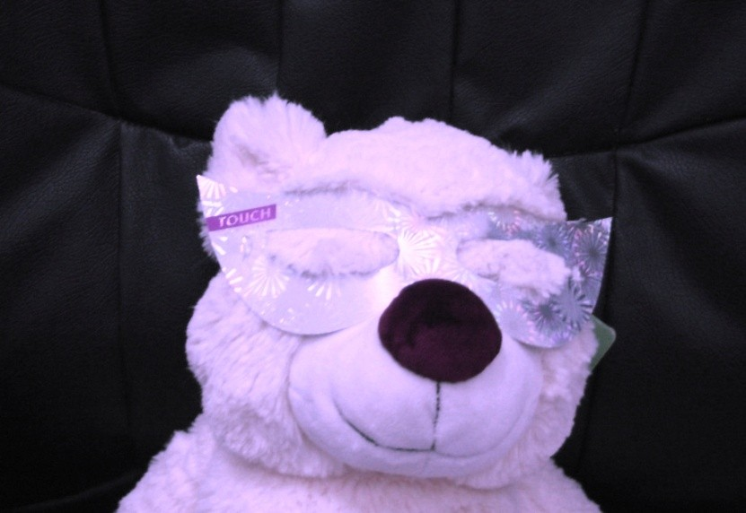 https://www.pashkevil.co.il/wp-content/uploads/2009/03/touch-bear.jpg